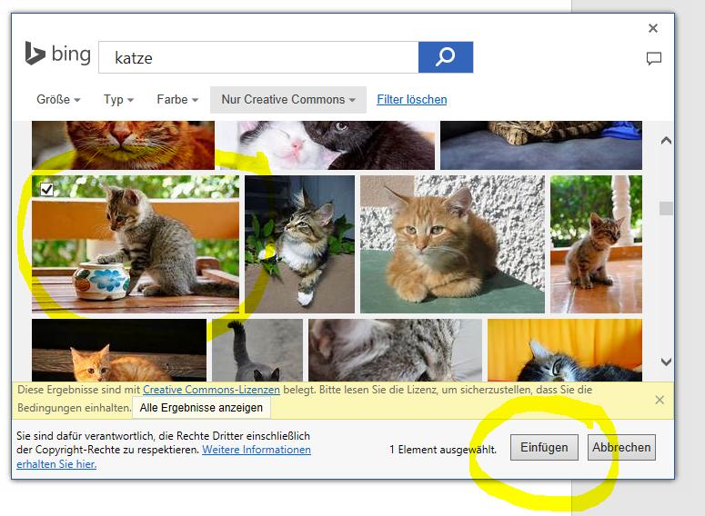 Bild aus Bildersuche Bing in Word einfuegen