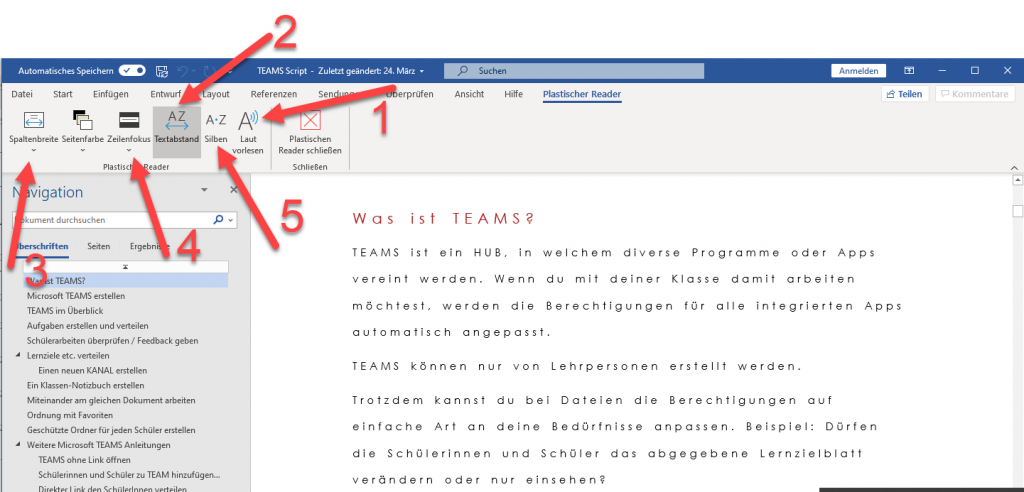 Einstellungen Plastischer Reader in Word