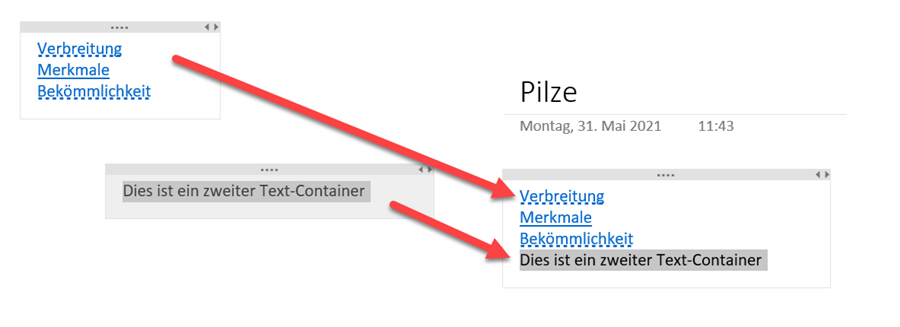 14 OneNote Textcontainer